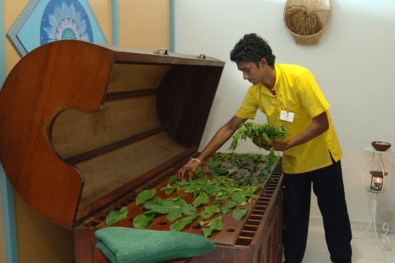 Individual Ayurvedic Treatments - Lanka Princess