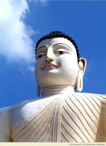 Buddha Symbiosis Values